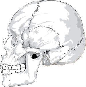 skull fracture from head injury